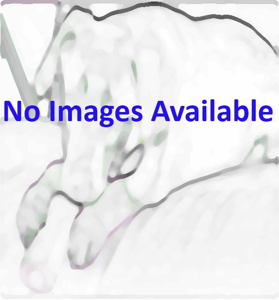 no images for this pet